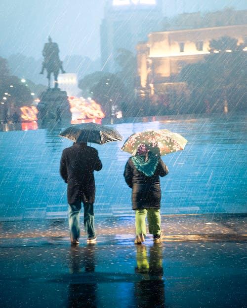 下雨, 人, 休閒 的 免费素材图片