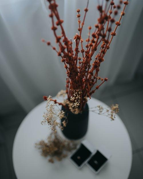 Red and White Flower on Black Vase