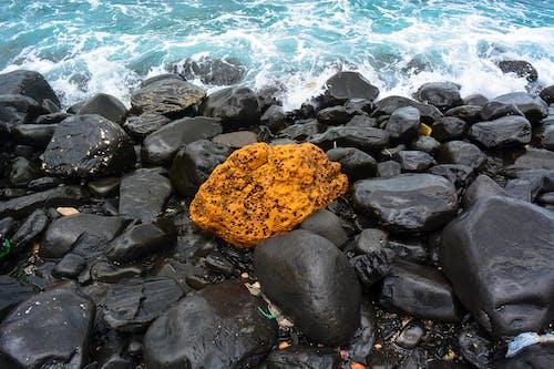 Free stock photo of pebbles, rock, sea