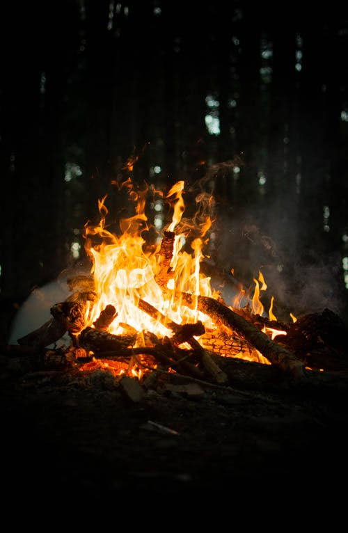 Burning Wood in the Woods