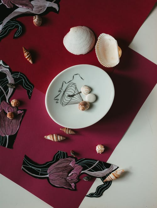 Composition of seashells on ceramic plate and floral decor