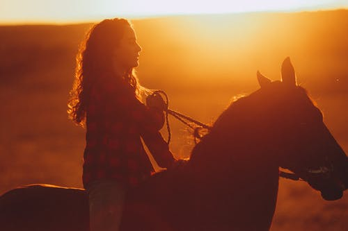 Young woman riding horse in rural field