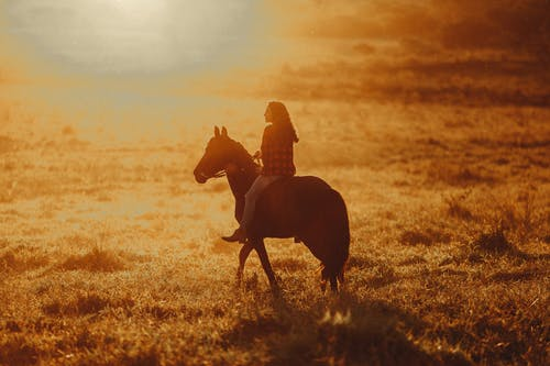 Woman with long hair riding horse in sunny pasture