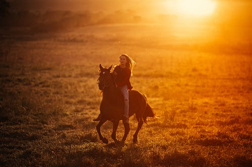 Young female riding strong horse in rural field with fresh grass in bright sunlight