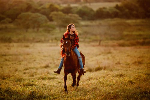 Peaceful woman riding horse on grassy meadow