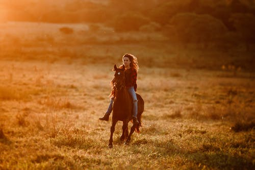 Full body of graceful female equestrian riding brown horse on grassy field against growing trees in countryside on sunny evening
