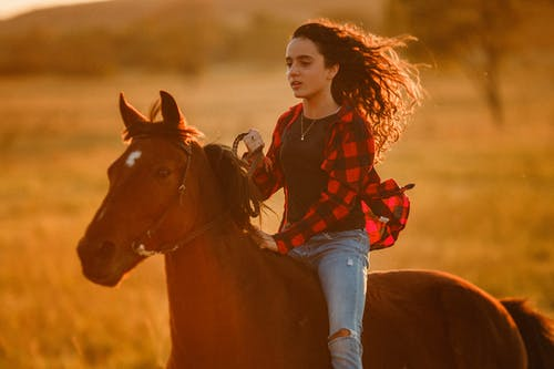 Side view of active female equestrian with flying hair sitting on brown horse during horseback riding in countryside on blurred background