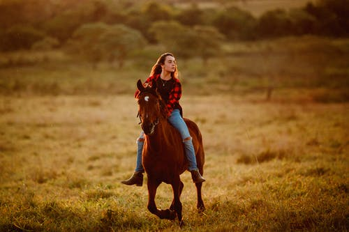Tranquil woman riding horse on field
