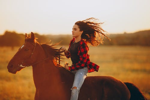 Young woman riding horseback on meadow