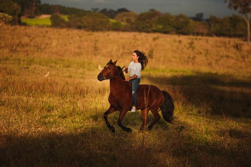 Active woman riding horse in rural area