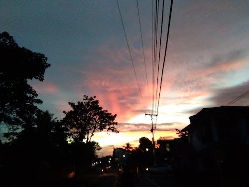 Free stock photo of calm, dark, quiet, sunset