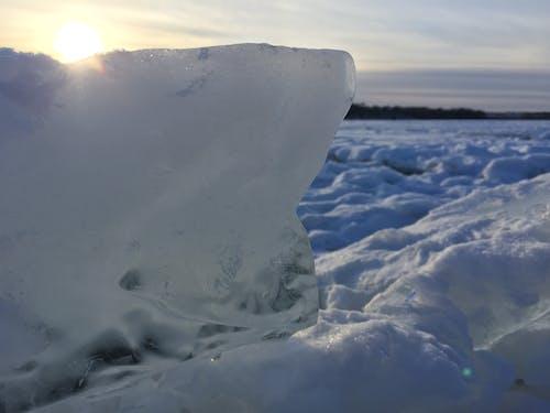 얼음의 무료 스톡 사진