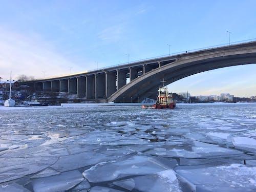 보트, 얼음의 무료 스톡 사진