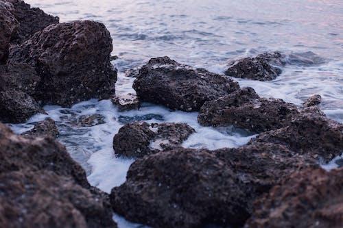Fotos de stock gratuitas de agua, costa, litoral, mar
