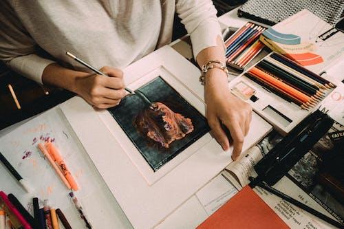 Foto profissional grátis de adulto, balcão, composição