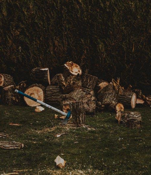 Axe in stump against cut tree trunks on meadow