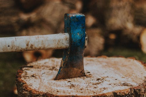 Ax with weathered handle and blade in cut tree trunk with dry surface in countryside