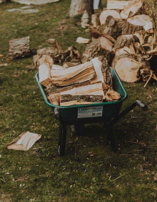 Wheelbarrow with pile of firewood on lawn