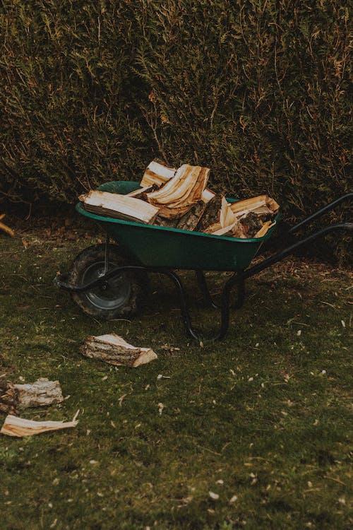 Wheelbarrow with woodpile on meadow against hedge