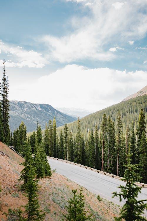 コロラド山脈, コロラド州, ハイキングの無料の写真素材