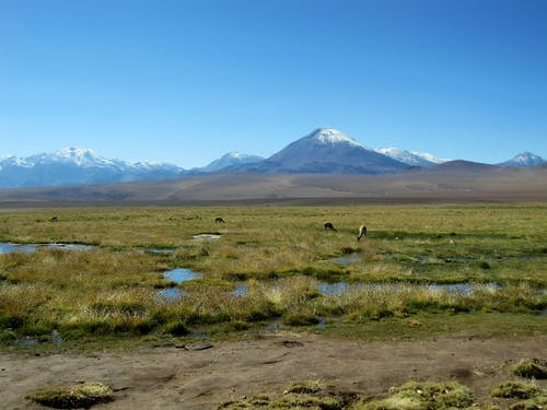 Free stock photo of chile, mountains, southamerica