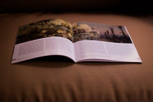 Free stock photo of adventist, book, christian