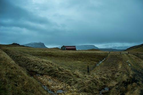 Foto d'estoc gratuïta de constipat, Islàndia, muntanyes, natire
