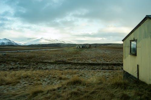 Foto d'estoc gratuïta de constipat, Islàndia, muntanyes, natura