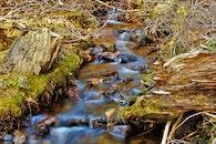 Water Stream on Creeks