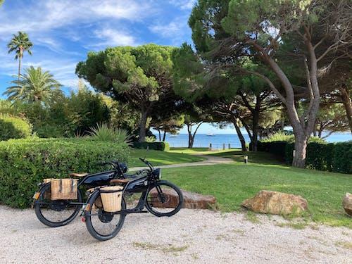 Free stock photo of beach, bike, nature