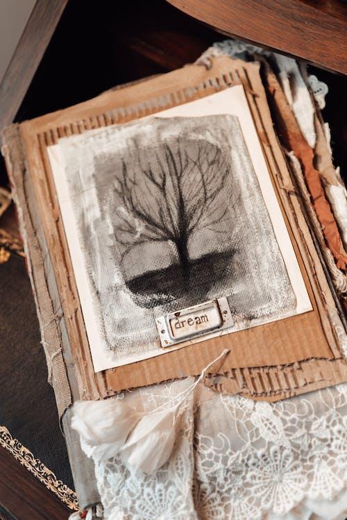 Δωρεάν στοκ φωτογραφιών με vintage, ανθίζω, ανώμαλος