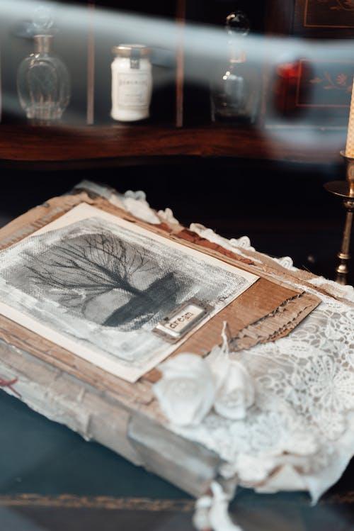 Δωρεάν στοκ φωτογραφιών με vintage, ανάμεικτος, ανθίζω