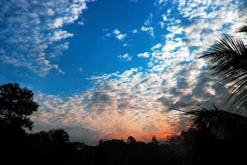 Fotobanka sbezplatnými fotkami na tému ranná obloha
