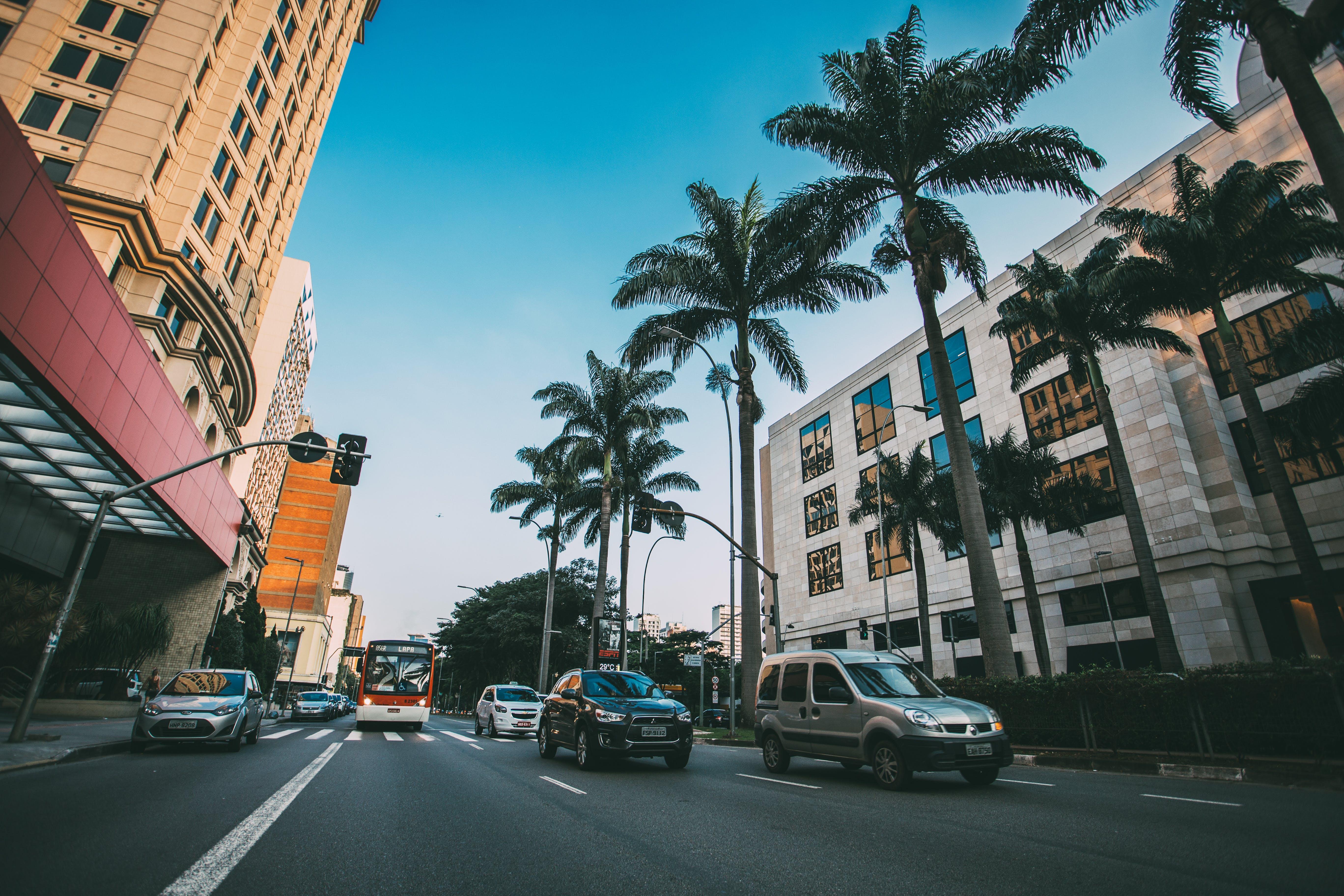 Kostnadsfri bild av bilar, fordon, gata, stad
