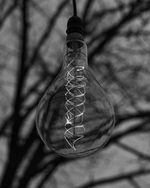 Grayscale Photo of Light Bulb