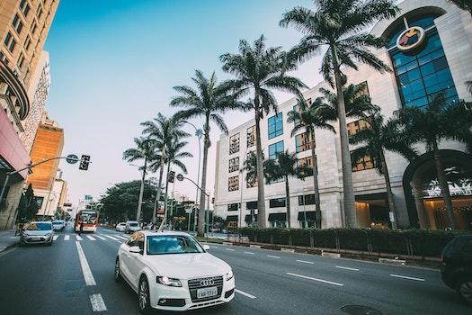 White Audi Sedan on Gray Concrete Road Near Green Trees Surround by Concrete Buildings