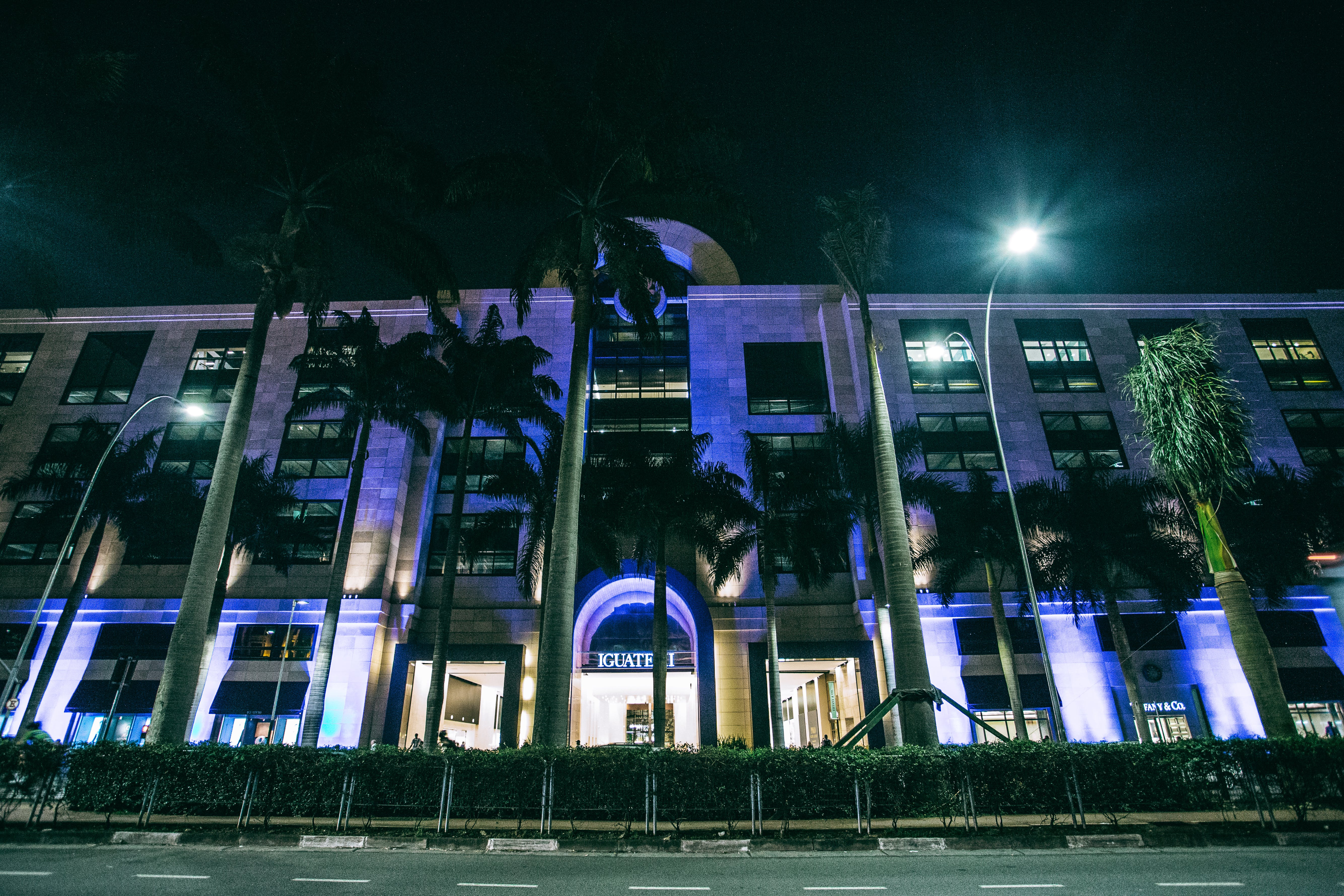 White Concrete Building Near Coconut Trees at Night