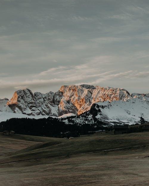 Grassy hill near snowy mountains