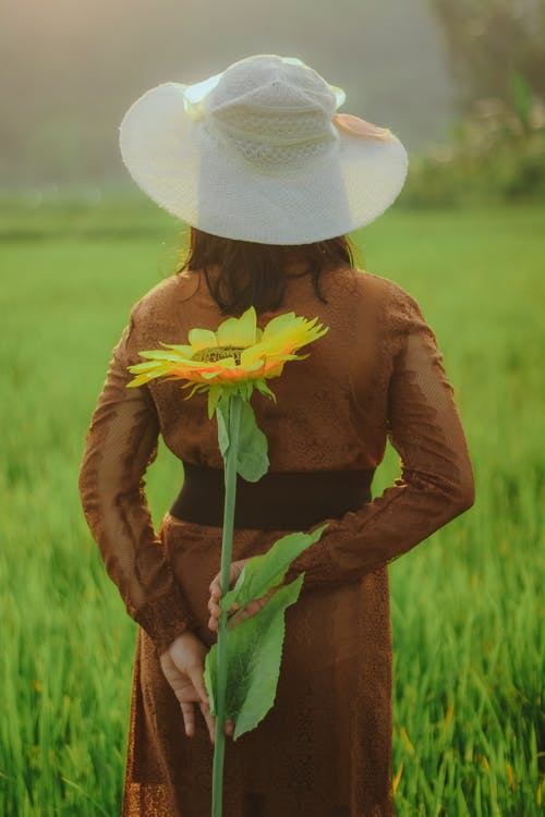 Back view of unrecognizable female in hat standing with blooming flower behind back in green field