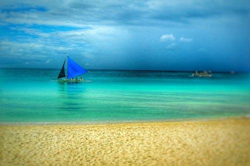 Foto profissional grátis de água, areia, barco a vela, barcos a vela