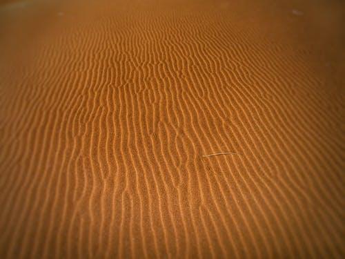 Imagine de stoc gratuită din arid, atrăgător, deșert, dună