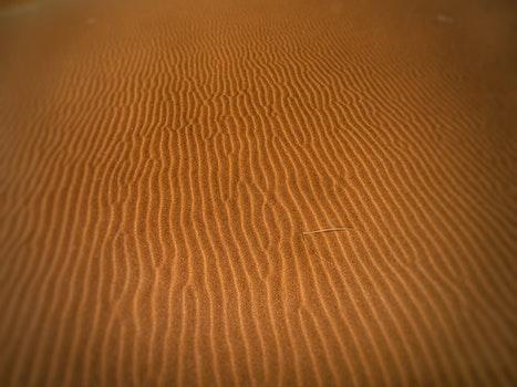 Kostenloses Stock Foto zu sand, wüste, trocken, heiß