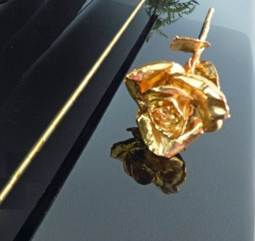 Δωρεάν στοκ φωτογραφιών με μοντέρνα τέχνη, νεκρή φύση, τριαντάφυλλο