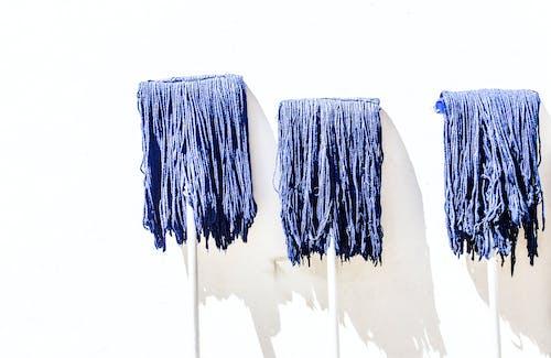 Gratis arkivbilde med blå, fin kunst, hår, mob