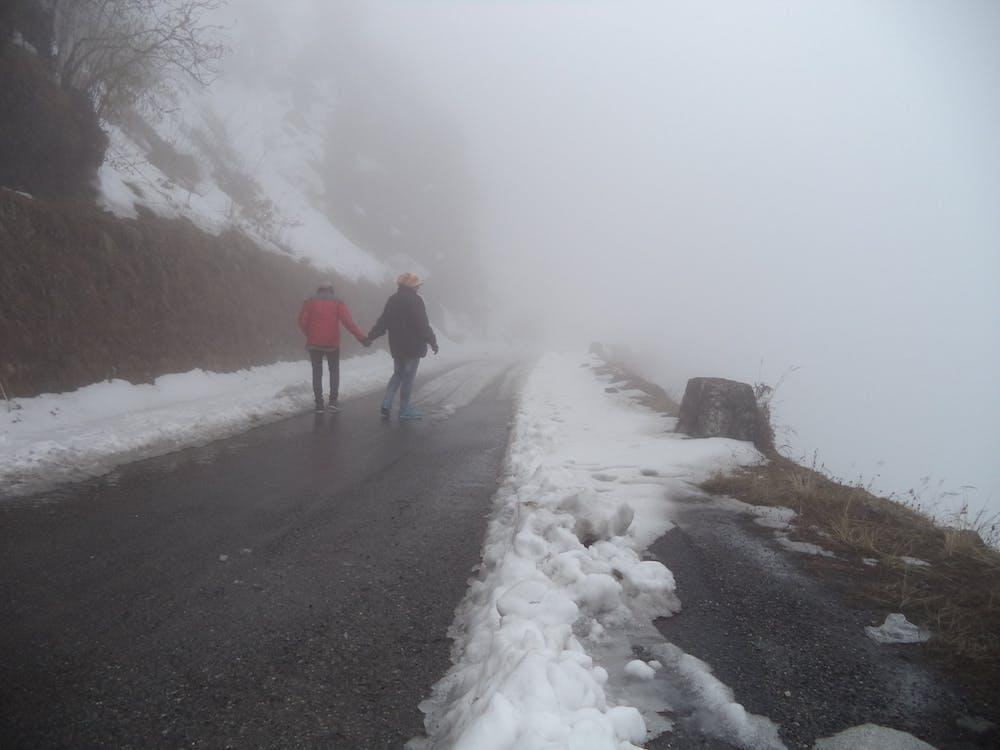 Free stock photo of foggy, sn, Sno