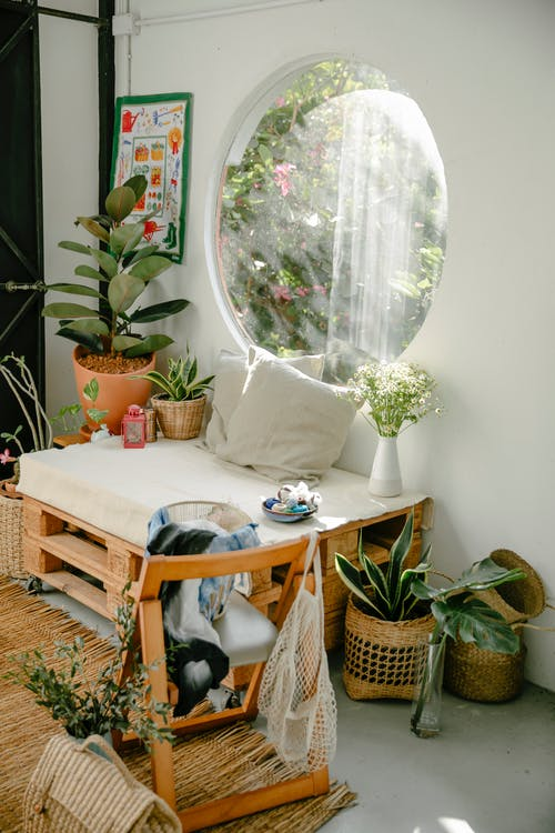 Cozy light room with wooden furniture and various potted houseplants