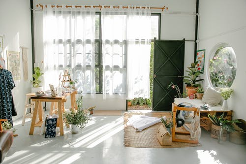 Interior of creative specious workshop with various fabrics and stylish garments and wooden furniture decorated with potted plants on sunny day