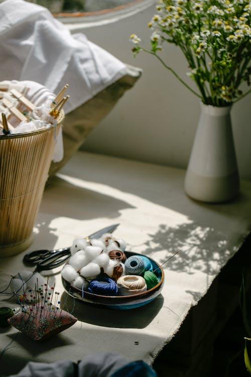 アトリエ, インドア, カモミールの無料の写真素材