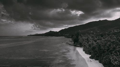 Foto profissional grátis de clima tropical, dji, férias