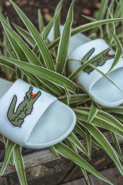 White and Green Flip Flops